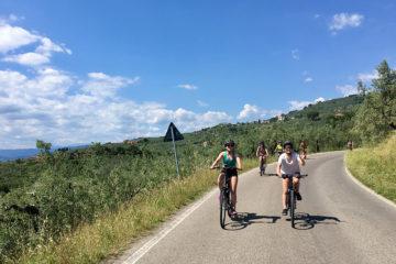 Lucca, egyéni szervezési túra