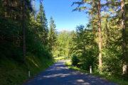 Dráva menti kerékpártúra: az út sok helyen erdőkben visz
